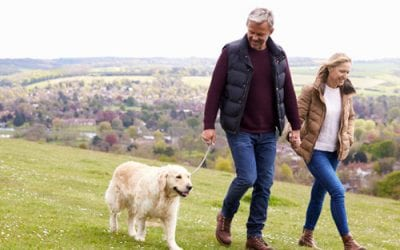 How can I boost my state pension?